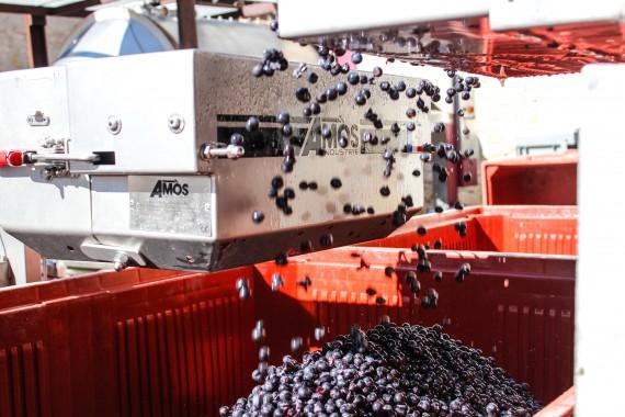 Calibaie, Une rupture technologique a découvrir au vignobles bardet , saint-emilion grand cru