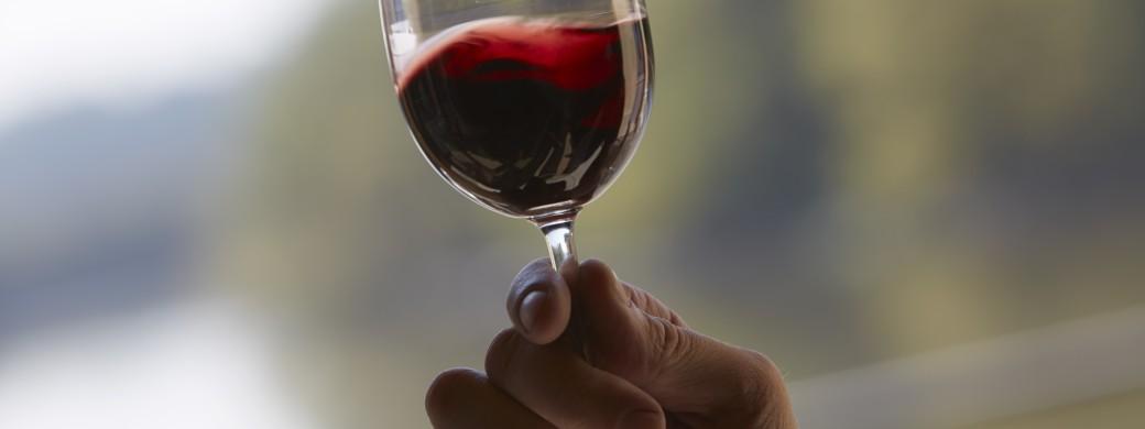 Verre à vin pendant la dégustation au vignobles bardet , saint-emilion grand cru